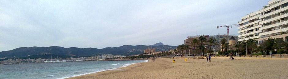 Finde en la isla de Mallorca