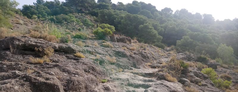 Cómo llegar a las ruinas de Bobastro en Málaga