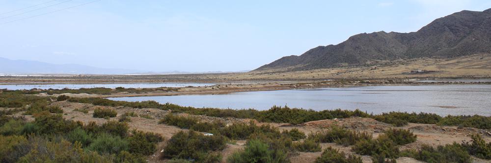 Salinas del poblado de Almadraba de Monteleva