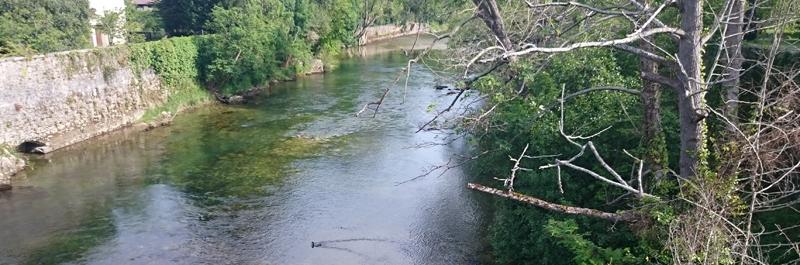 Paseo por el Río Sella en Cangas de Onís