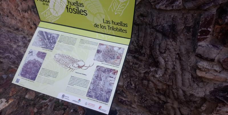 Ruta de los Fósiles en la Sierra de Francia