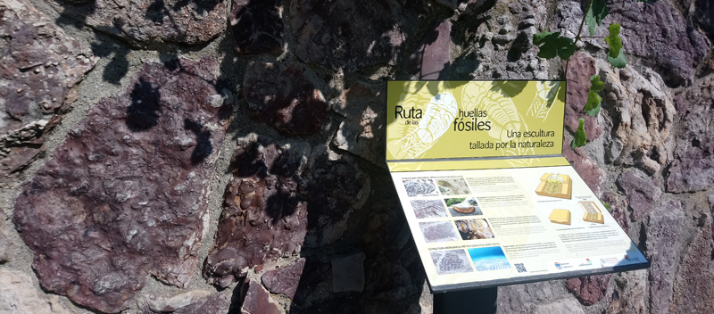 Monsagro, ruta de los fósiles en la Sierra de Francia