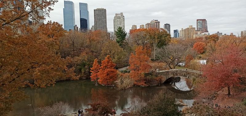 Lago de Central Park en otoño
