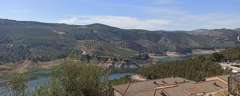 Panorámica del olivar de Iznájar, en Córdoba