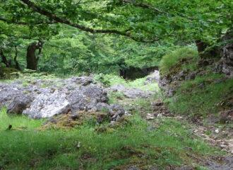 Visitar el Parque Urbasa en Navarra