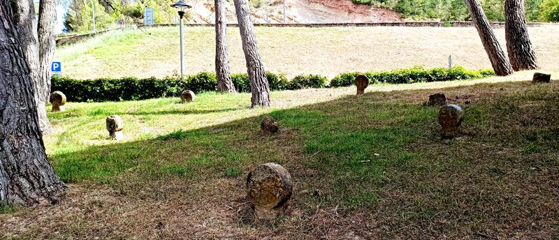 Estelas discoideas en el Castillo de Javier